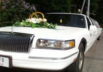 Towncar decorated wedding attributes, rings